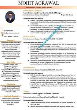 resume writing experts in mumbai