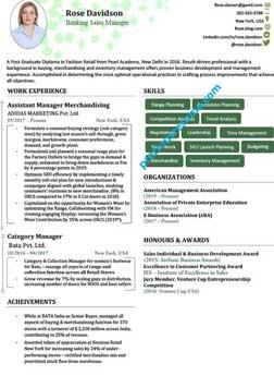 resume writing experts in faridabad